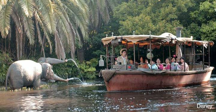 The Jungle Cruise at Home!